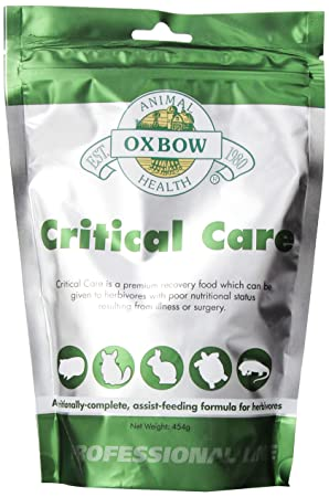 Oxbow Critical Care Pet Suplemento, 1-Pound: Amazon.es: Productos para mascotas