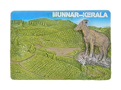 Temple Trees Polyresin Kerala Munnar Fridge Magnet (7.8 cm x 0.5 cm x 5.4 cm)