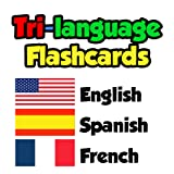 Flashcards - English, Spanish, French offers
