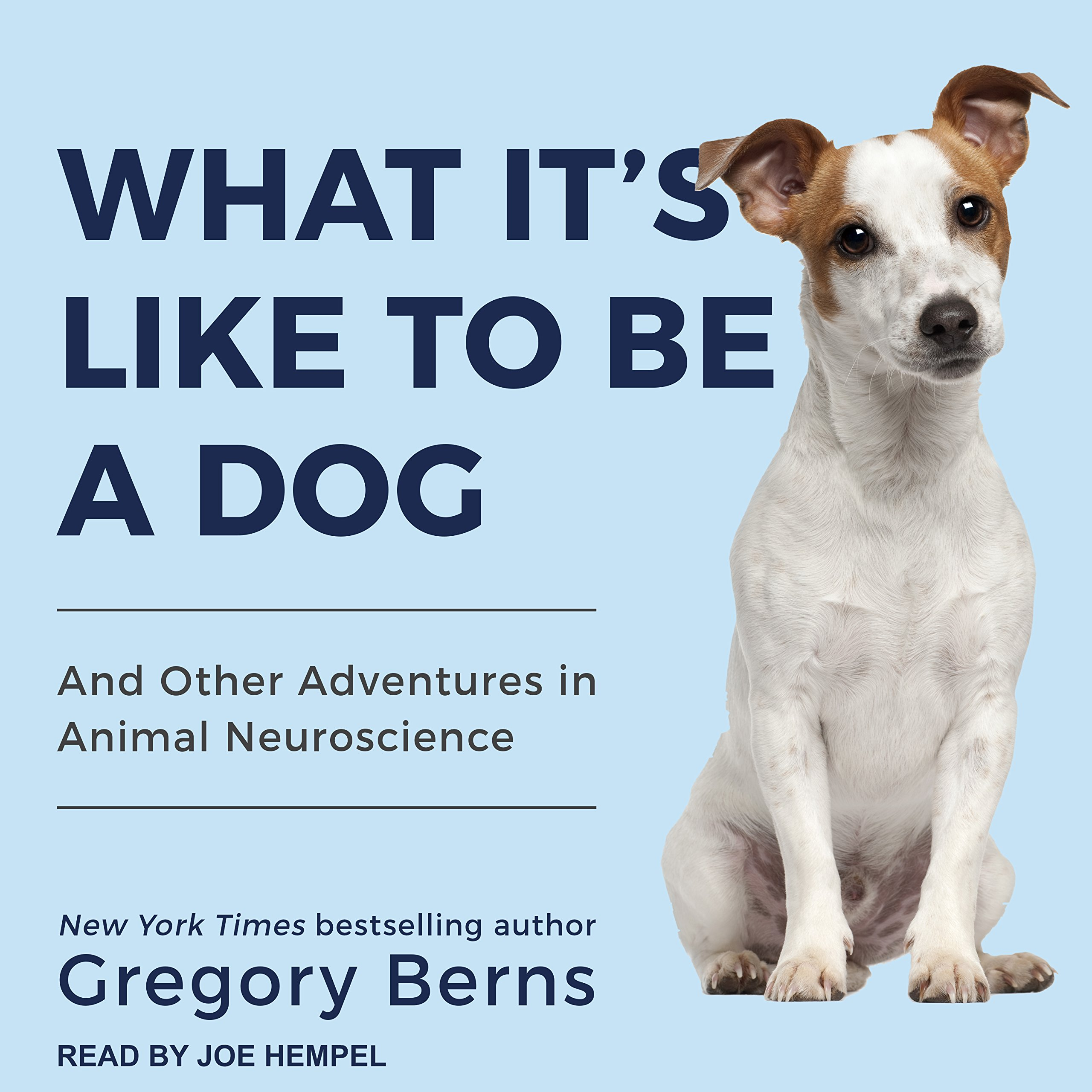 What It\'s Like to Be a Dog: And Other Adventures in Animal ...