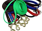 JimHodgesDogTraining Gummy Dog Leash, Biothane, Dog Training Leash, Waterproof, Weatherproof, Made in The USA, 6 Foot Length for Small, Medium & Large Dogs or Puppies, Various Sizes & Colors