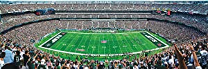 MasterPieces NFL Stadium Panoramic Jigsaw Puzzle