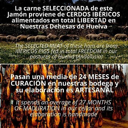 Paleta de Jamon de Cebo de Campo Iberico 50% Raza Iberica - Jamon Iberico de Elaboracion Artesanal - Embutidos Ibericos de Bellota - Pieza Tradicional 5 - 5.5 kg