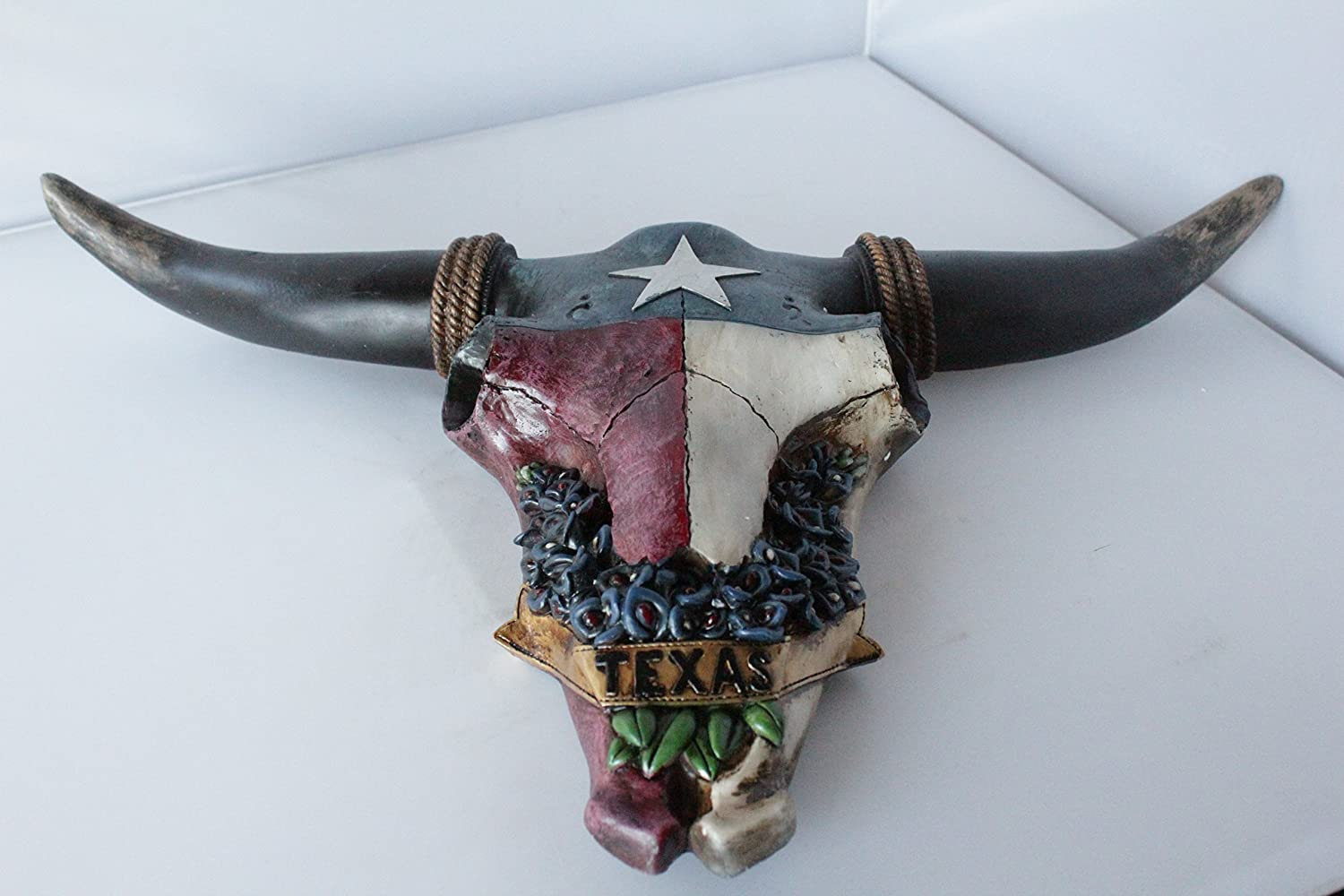 Amazon.com: Western Texas Flag Bluebonnet Flowers Longhorn Steer ...