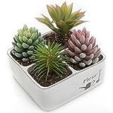 Cement Planter Box, 4 Compartment French Country FLEUR Design Flower Pot, White
