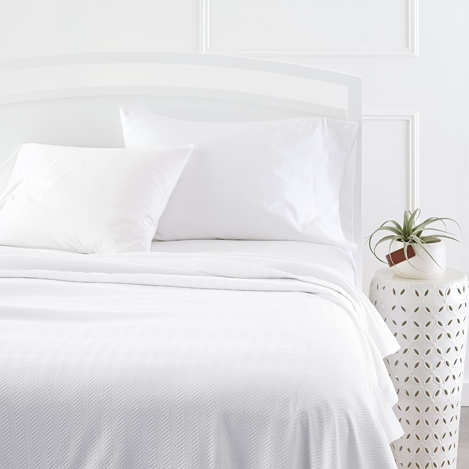 Pinzon Signature Zero-Twist Egyptian Cotton Blanket - Full/Queen, White