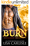 Burn: A vampire versus shifter enemies-to-lovers romance (Underground Encounters Book 4)
