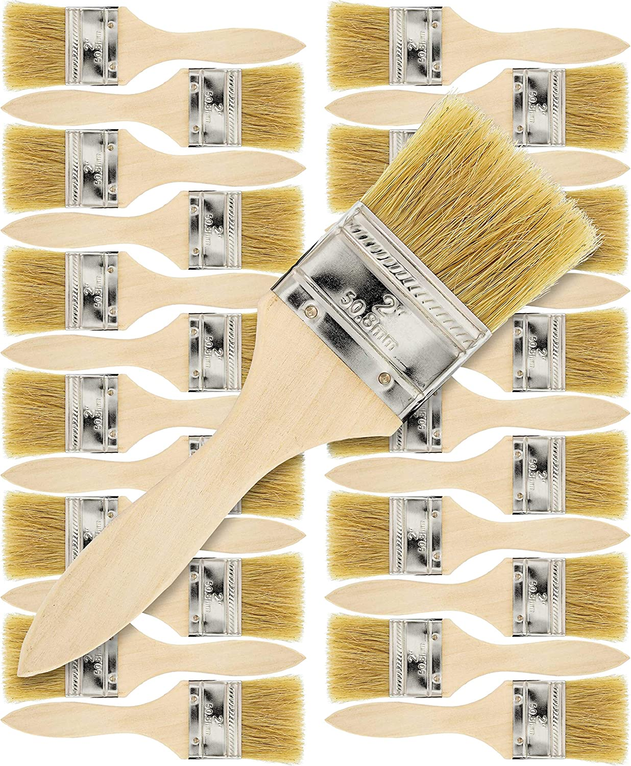 """Lot of 36 1/"""" Chip Brushes Brush Paint Glue Touchups 100/% Pure Bristle"""