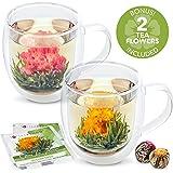 Teabloom Large Capacity Double Wall Insulated Tea & Coffee Mugs, Set of 2 (18oz / 550ml)