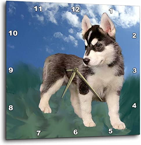 3dRose DPP_4439_2 Siberian Husky Puppy Wall Clock, 13 by 13-Inch