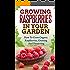 Growing Raspberries In Your Garden - How To Grow Organic Raspberries, Growing and Preserving: Canning, Preserving Berries, Backyard Berries, Square Foot ... Raspberry Jam, Own Berries, Raspberry)
