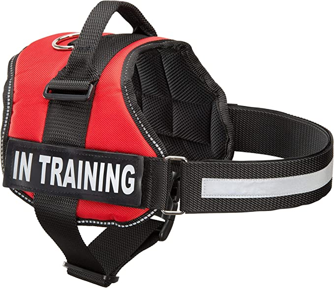 Service Dog in Training Puppy Scarf Red Service Dog in Training Please Do Not Pet Dog Bandana Additional Colors Available at WhoaDogE