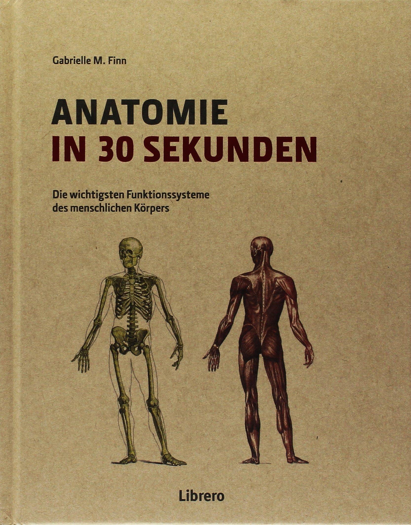 Anatomie in 30 Sekunden: Amazon.de: GABRIELLE M. FINN: Bücher