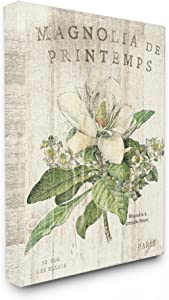 Stupell Industries French Magnolias In Spring Stretched Canvas Wall Art, Proudly Made in USA