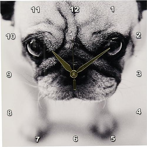 3dRose TNMGraphics Pug Wall Clock, 10 by 10-Inch
