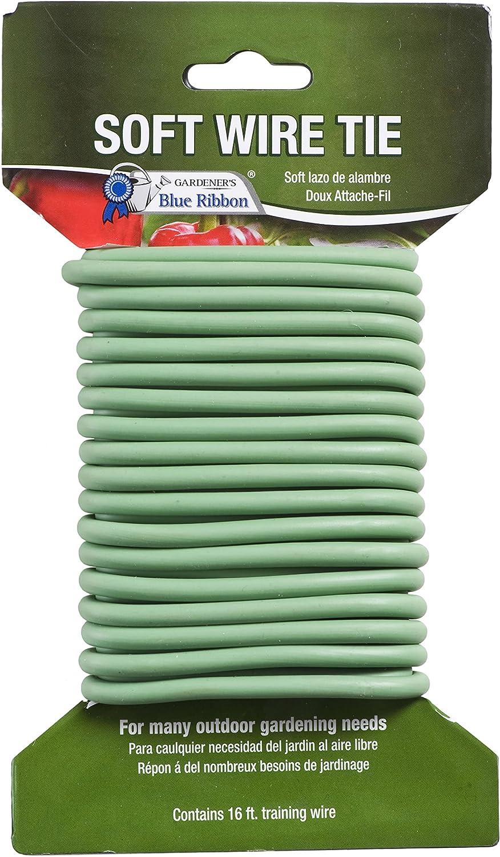 Amazon.com: Gardener s), diseño con lazo, color azul T004B ...