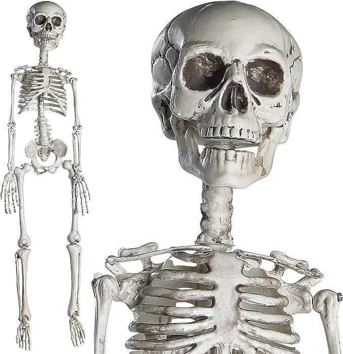 JOYIN 2PCS 16 Scary Halloween Decorations Halloween Skeletons Life Size Full Body Poseable Skeleton