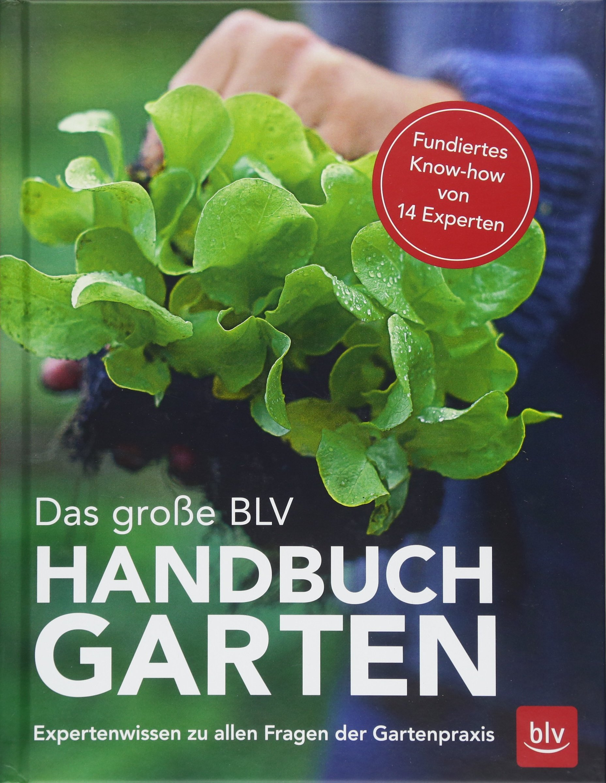 Das große BLV Handbuch Garten: Expertenwissen zu allen Fragen der Gartenpraxis