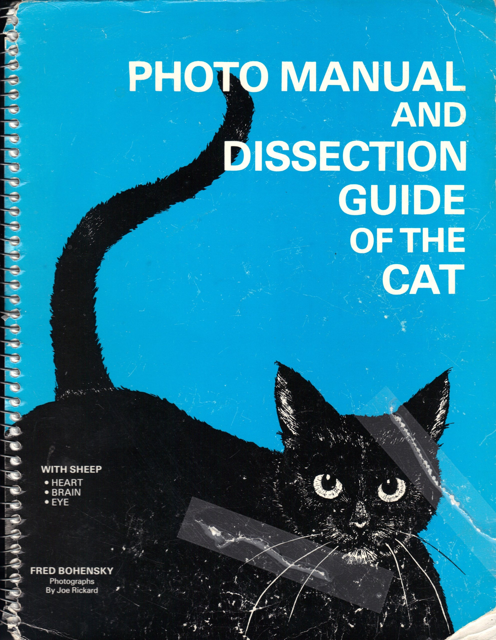Photo Manual and Dissection Guide of the Cat: With Sheep Heart ...