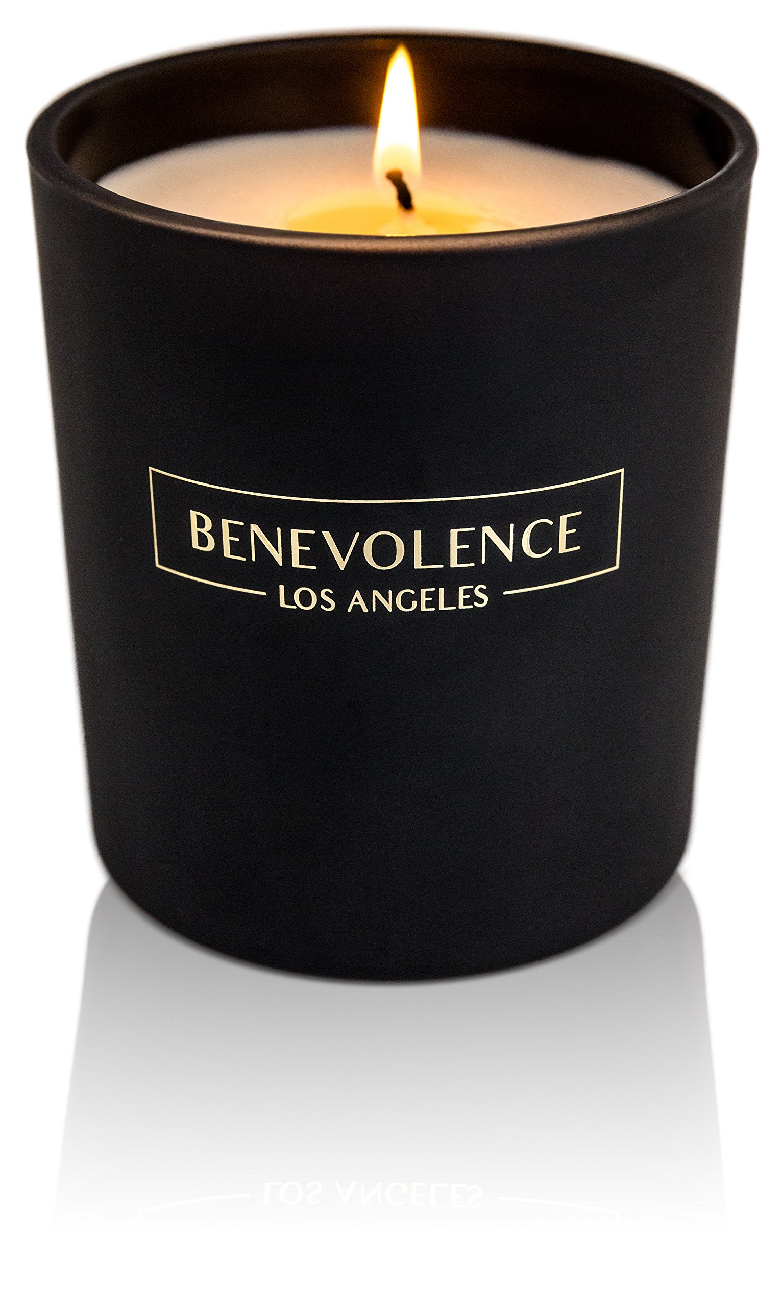 Benevolence LA Scented Candle Aromatherapy Rose & Sandalwood: Strong Clean Fragrance For Home Soy Wax Matte Black Glass for Charity Citrus Decorative Jar by Benevolence LA