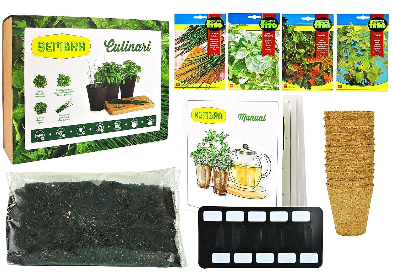 Anzuchtset / Pflanzset Culinari für Schnittlauch, Petersilie, Oregano und Basilikum mit allem was benötigt wird und Schritt-für-Schritt Anleitung