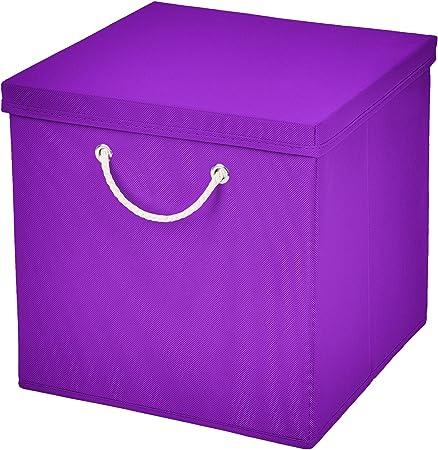 Caja de almacenaje, 30 x 30 x 30 cm, con tapa, morado, 1 unidad: Amazon.es: Hogar
