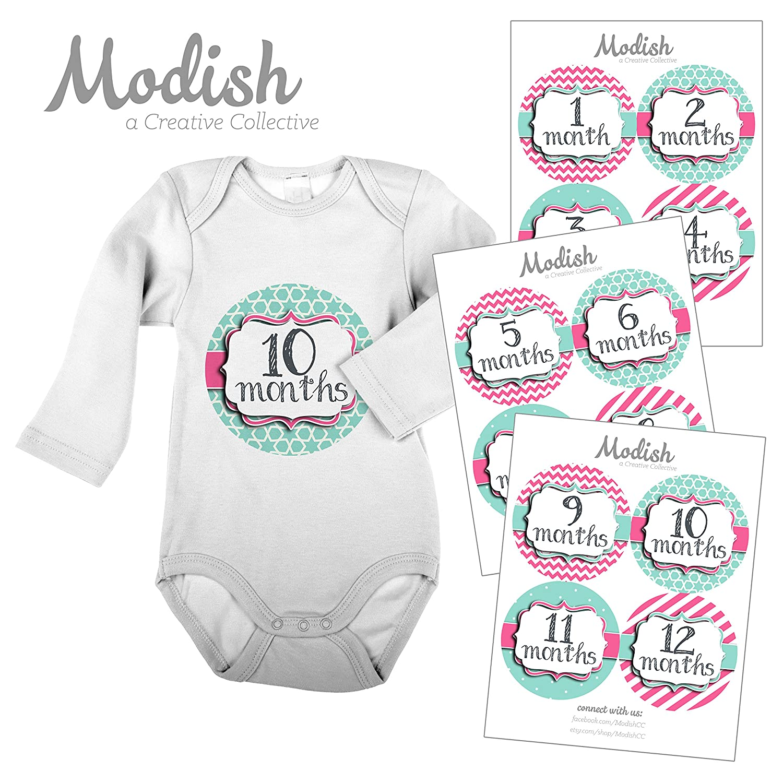 最新作 12 Monthly Baby Months Collective Stickers, Pink by & Teal, Girl, Baby Belly Stickers, Monthly Onesie Stickers, First Year Stickers Months 1-12, Pink & Teal, Baby Girl by Modish - Creative Collective B00SPICW5A, 売木村:1a837058 --- mvd.ee