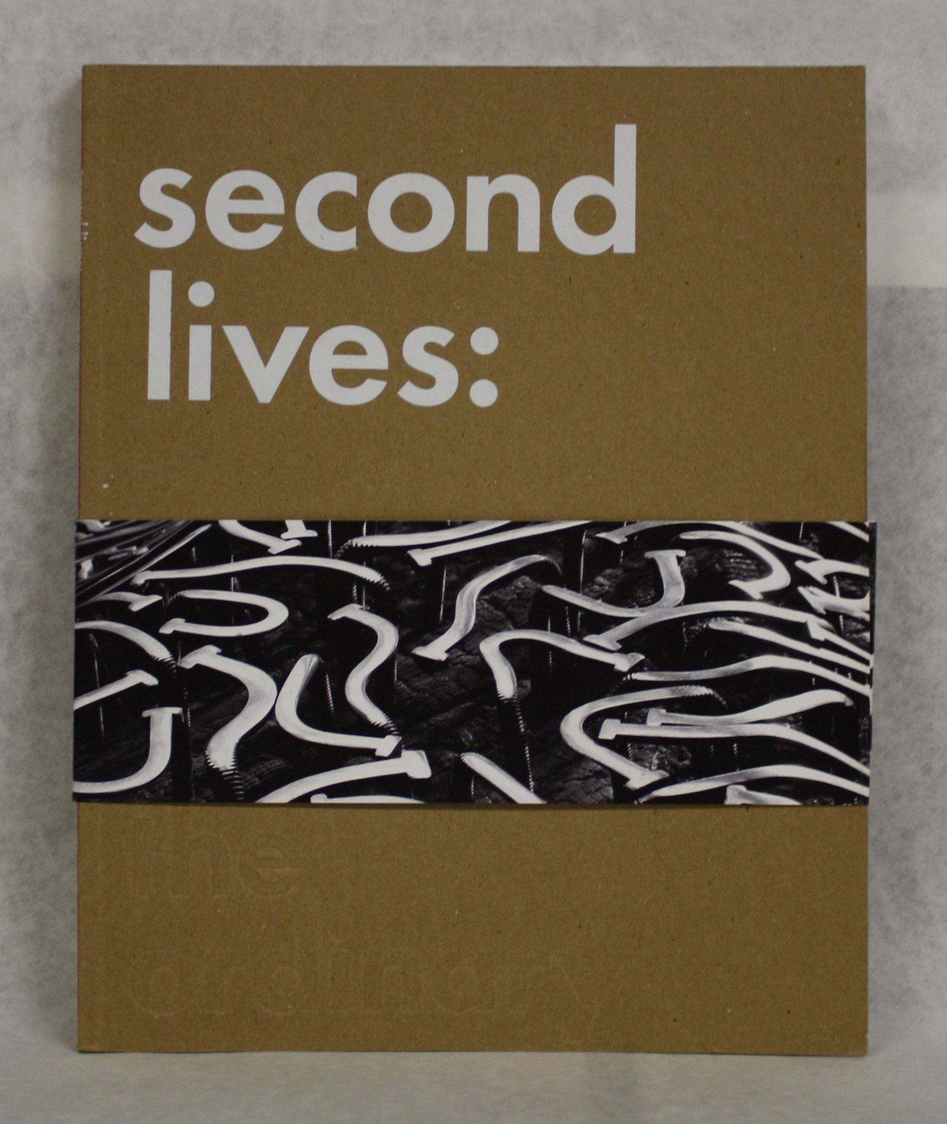 Second Lives: Remixing the Ordinary ebook