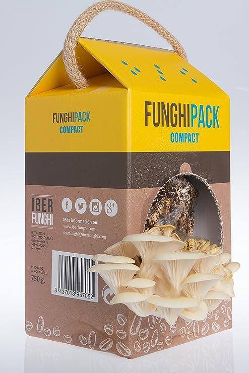 Funghipack Compact-Kit de cultivo de setas sobre posos de café ...