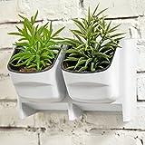 MyGift Vertical Living Wall Planter for Indoor Outdoor Herb Vegetable Flower Garden Plastic Pot, White