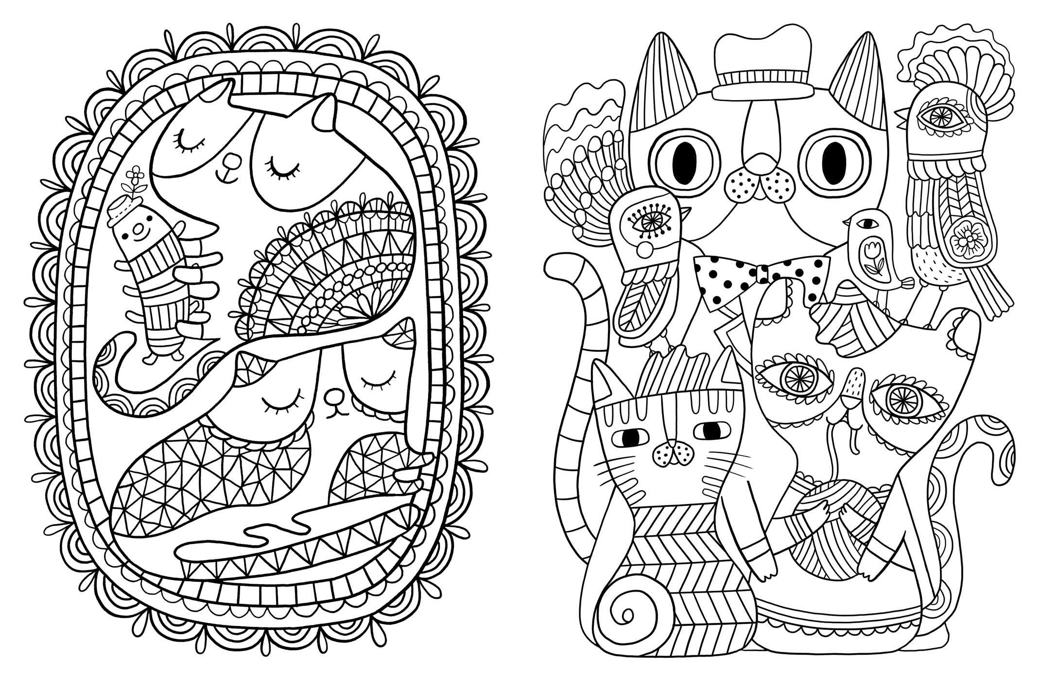 Amazoncom Posh Adult Coloring Book Cats Kittens for Comfort