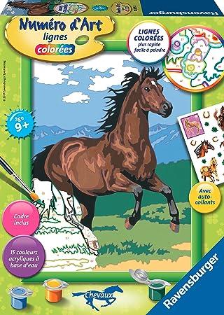 Ravensburger 28593 Malen Nach Zahlen Mittelgross Braunes Pferd Im Galopp Amazon De Spielzeug