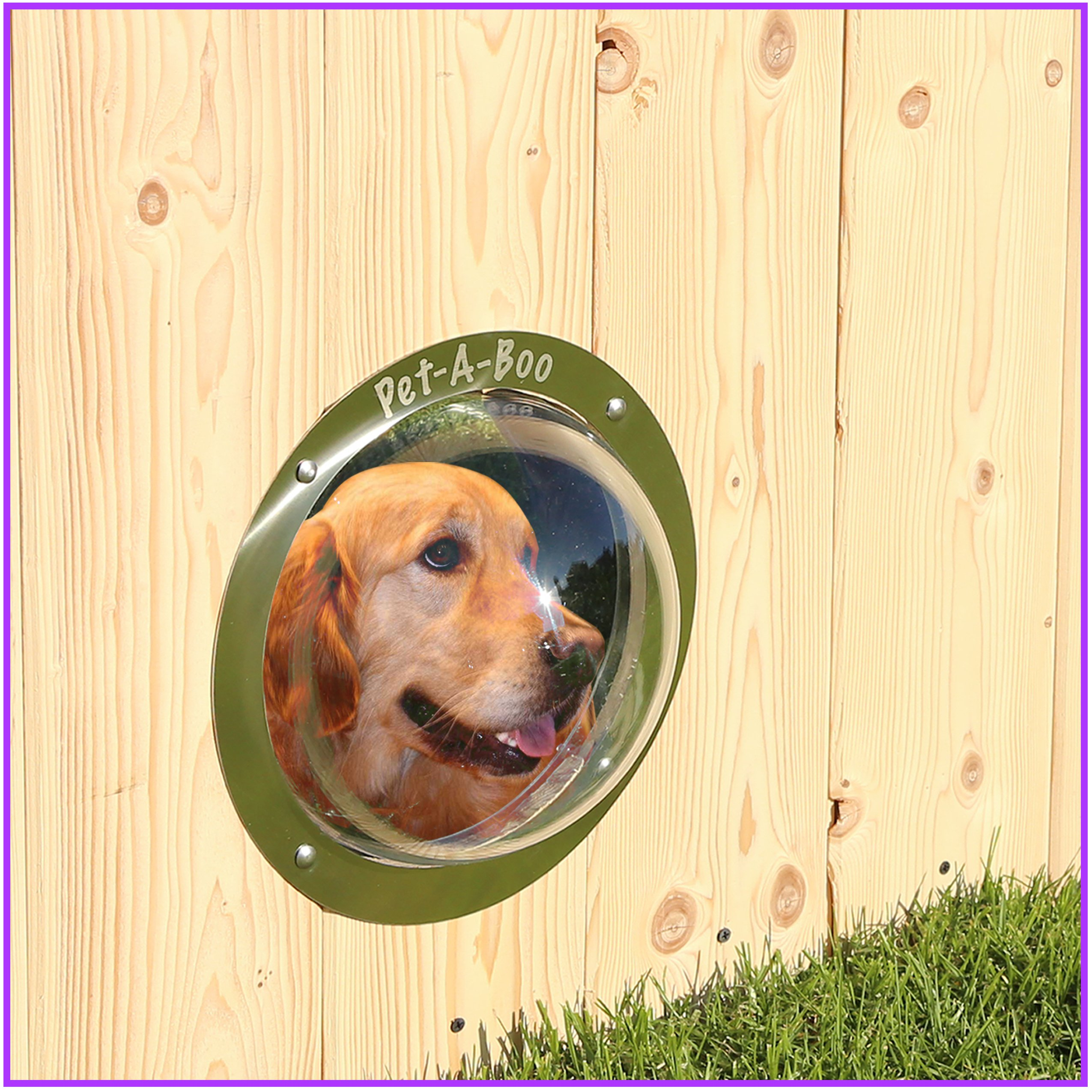 PET-A-BOO Pet Window Fence Acrylic Clear Dome 9.5'' Diameter | Allow your Pets to Safely Satisfy Their Curiosity through a Bubble Dome | Perfect Size for All Dogs