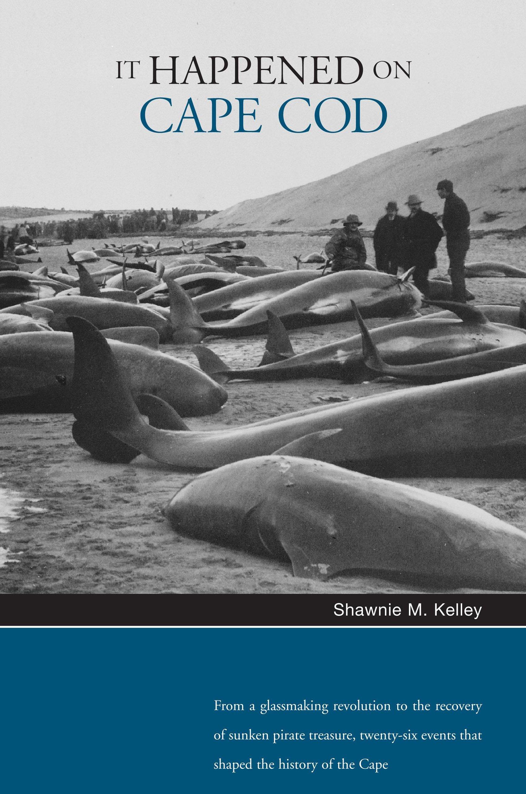 It Happened on Cape Cod (It Happened In Series) PDF