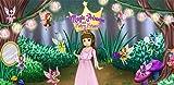 Magic Princess Madelaine & Fairy Friends