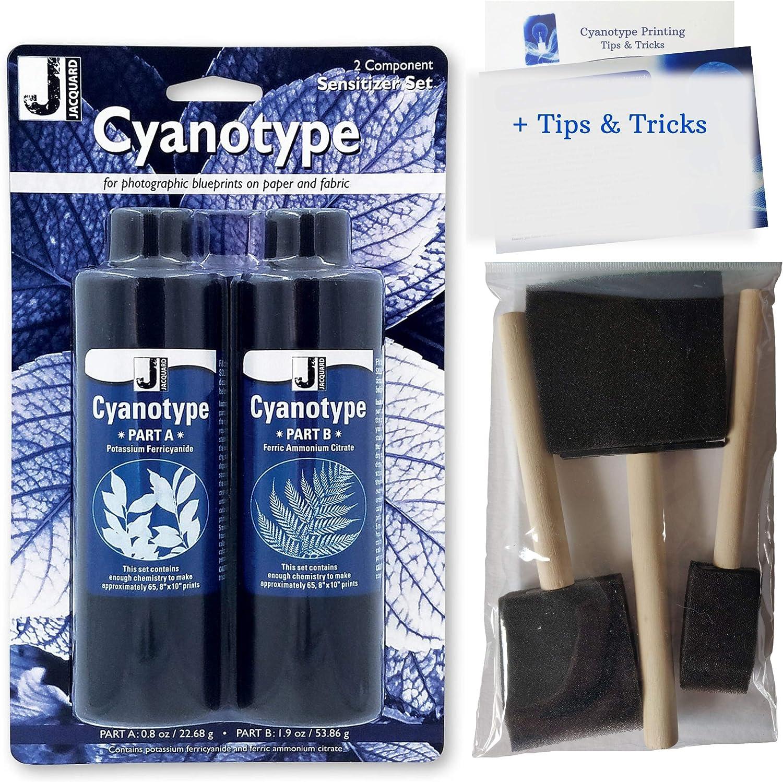 Cyanotype Kit - Papel para impresión solar, paquete con 3 brochas de espuma