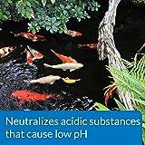 PondCare® pH Up Adjuster
