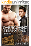 Overcoming Stereotypes (Miracle Book 4)