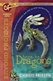 Here Be Dragons: The Cf Sculpture Series Book (Beyond Projects)