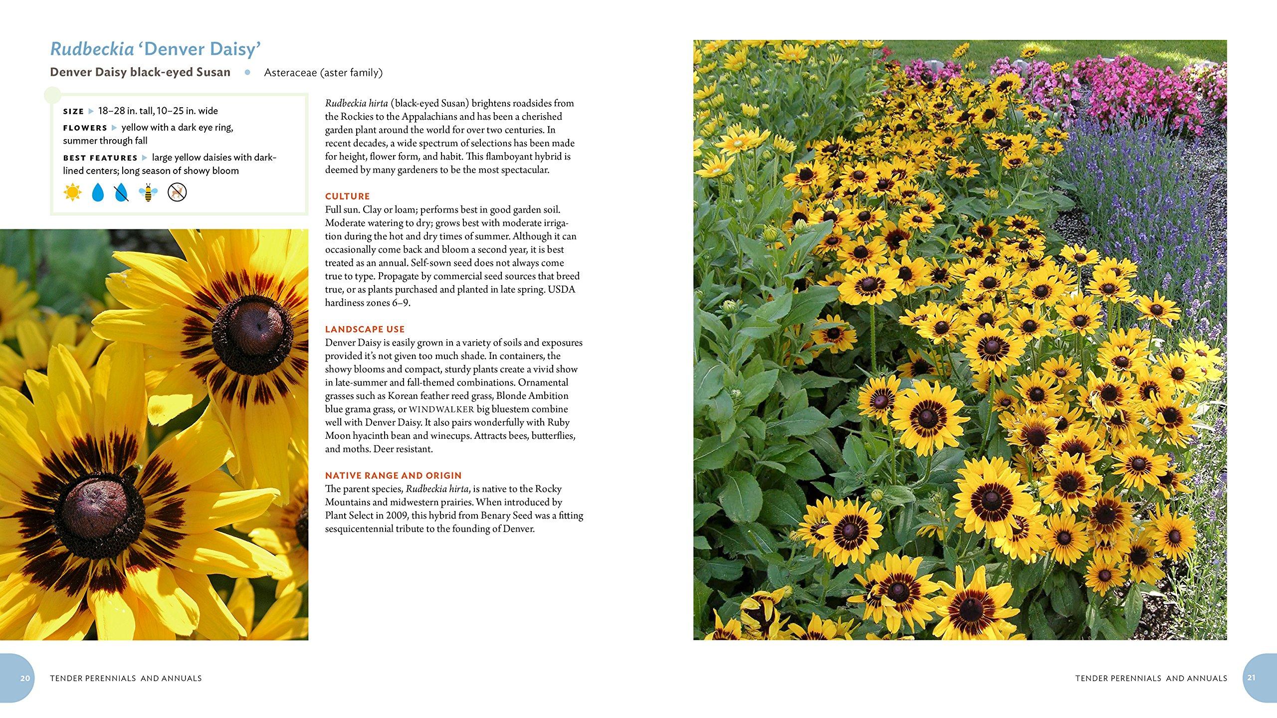 Pretty Tough Plants: 135 Resilient, Watersmart Choices For A Beautiful  Garden: Plant Select: 9781604697353: Amazon: Books