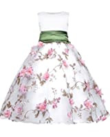 Amberry Little Big Girl's Embroidery Flower-Applique Sash Dress