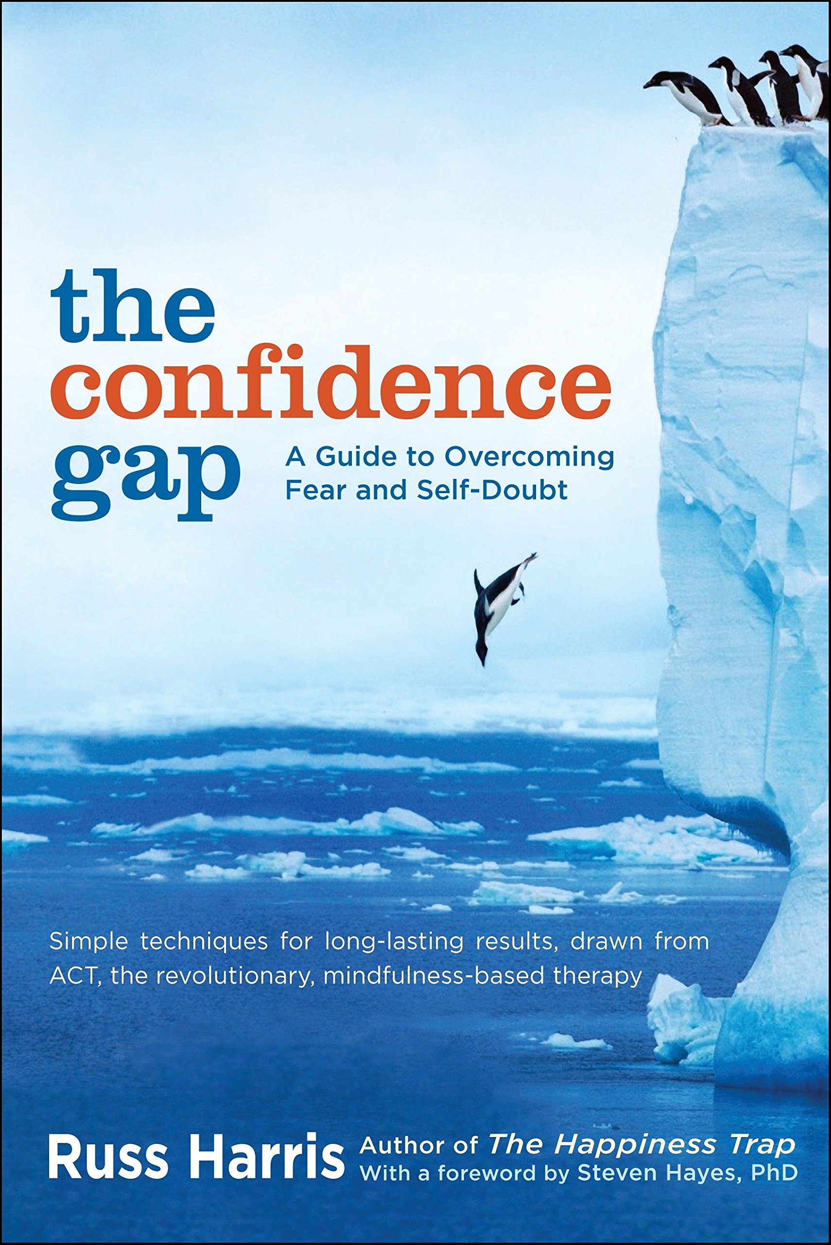 The Confidence Gap  A Guide To Overcoming Fear And Self Doubt