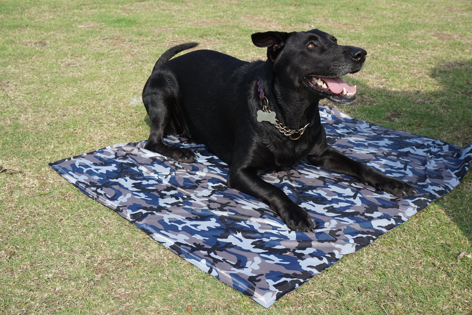 Ouzen Pet Chilled Dog Self Cooling Mat Pad for Kennels,Couches, Car Seats,Crates and Beds (XL) by Ouzen (Image #5)