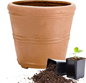 Martha Stewart Garden, Round False Bottom Planter, 12 Inch, Terracotta