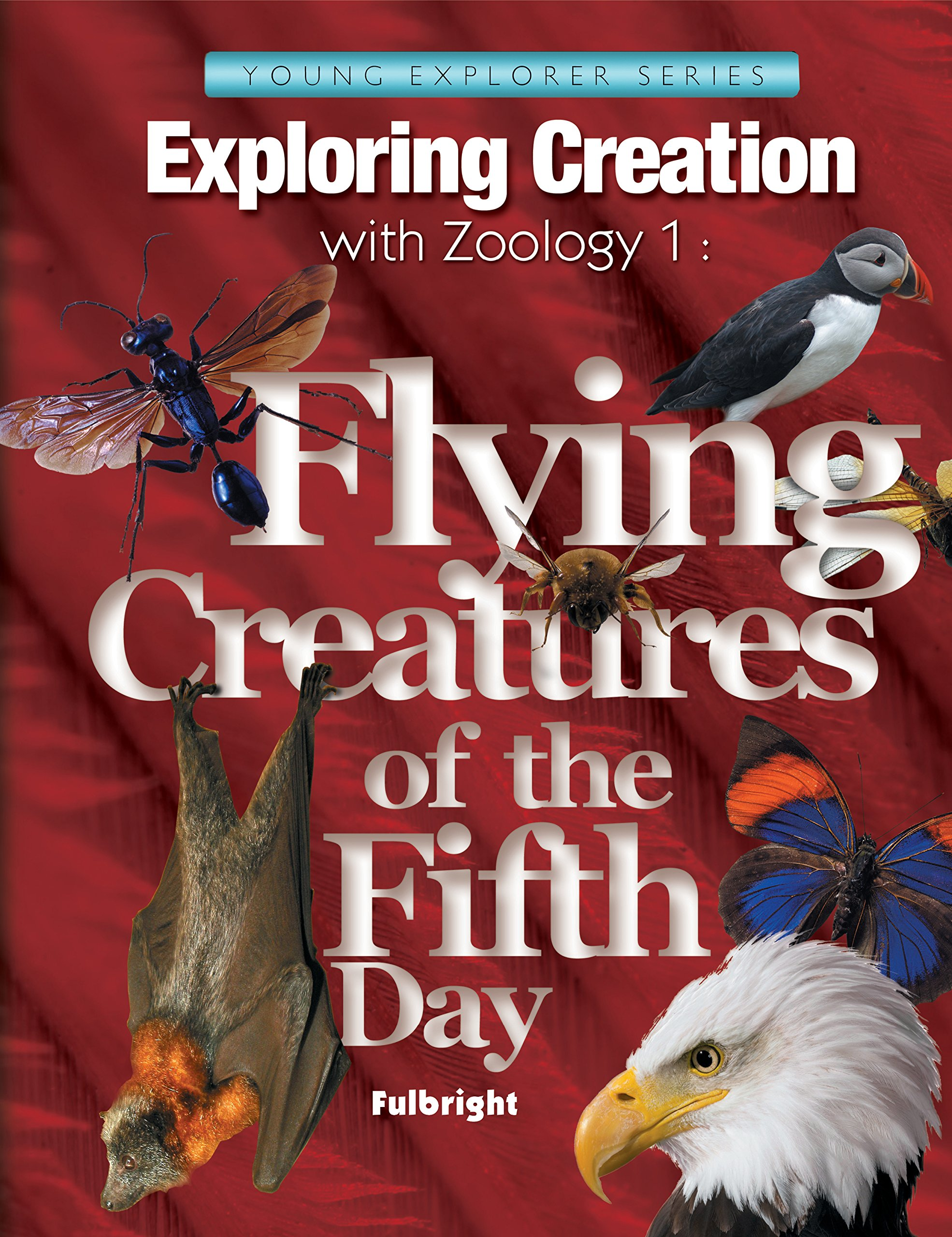 Exploring Creatin with Zoology 1:  Flying Creatures of the Fifth Day, Textbook (Young Explorer (Apologia Educational Ministries)) by Brand: Apologia Educational Ministries