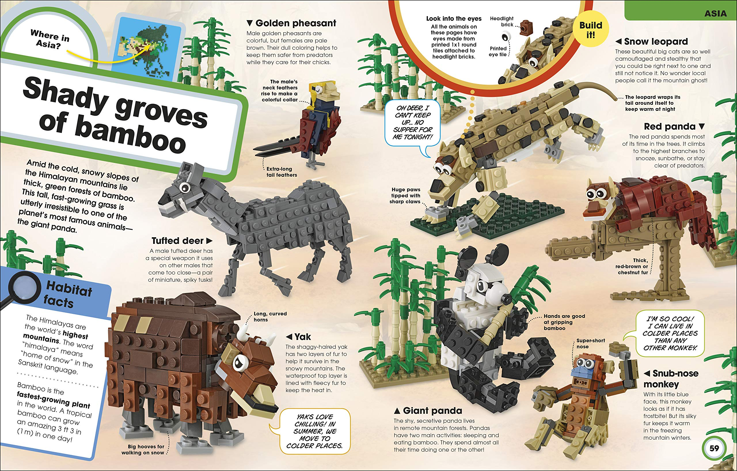 LEGO Animal Atlas: Discover the Animals of the World and Get