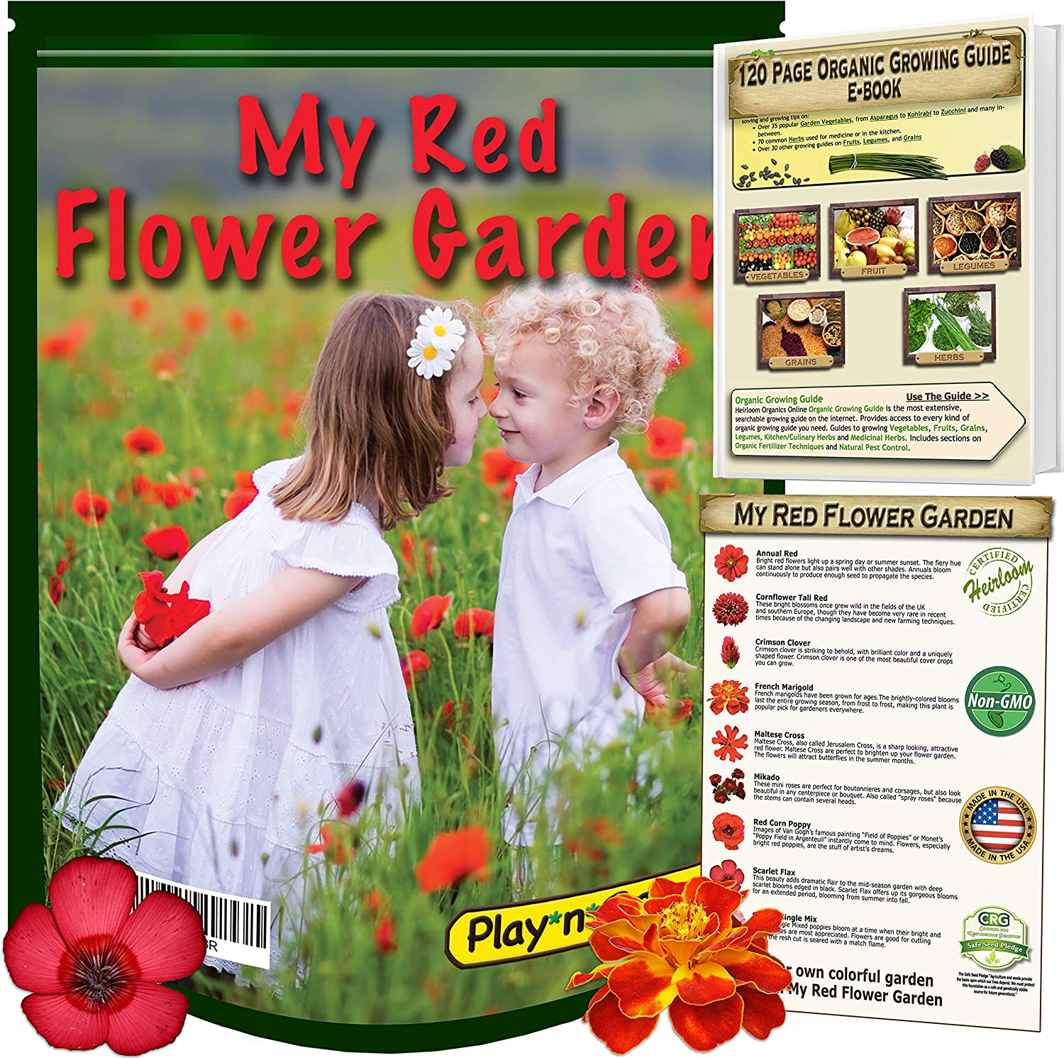 SCARLET FLAX  100 FRESH SEEDS FREE SHIPPING