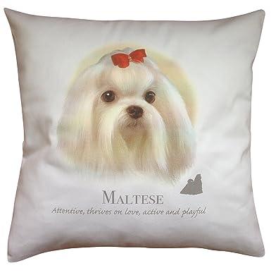 De perro Maltés Breed diseño en forma de perro con diseño de ...
