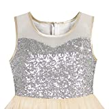 458e732161e3 Galleon - KB23 Girls Dress Beige Sequined Tulle Hi-lo Wedding Party ...