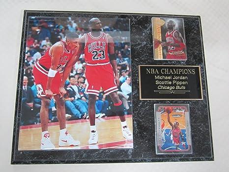 96929e1b62e Image Unavailable. Image not available for. Color  Michael Jordan Scottie  Pippen Chicago Bulls 2 Card Collector Plaque ...